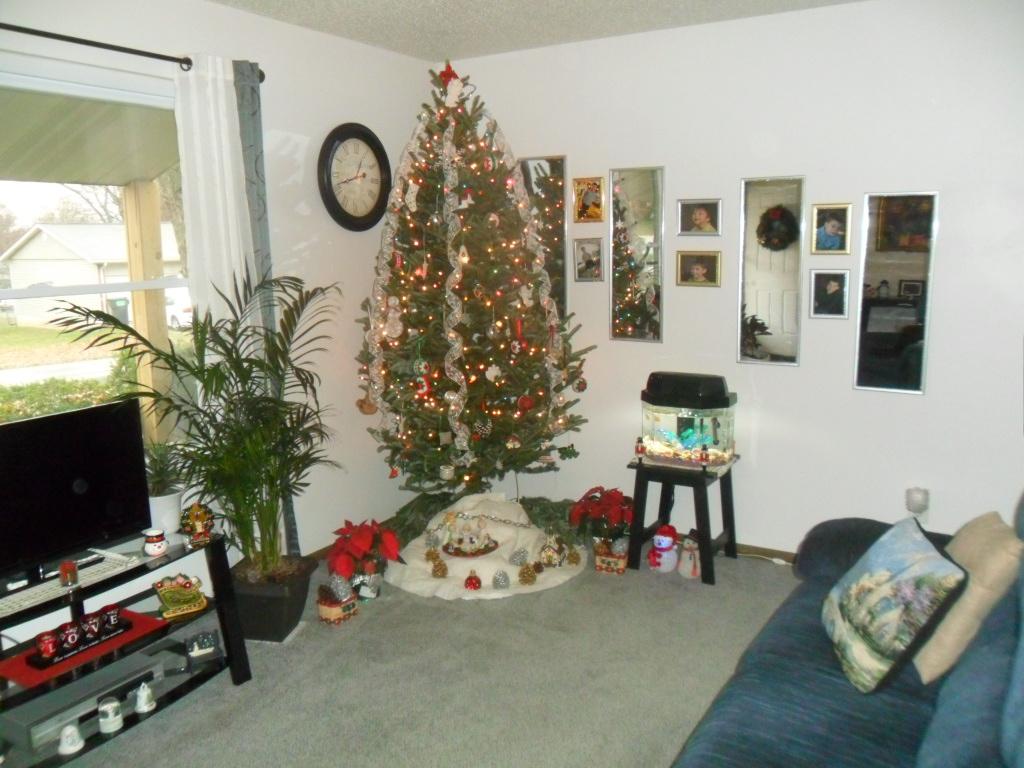 Christmas 2013 our home