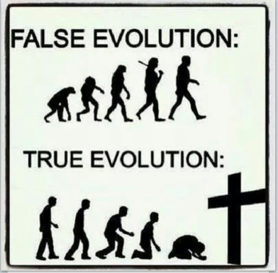True False Evolution