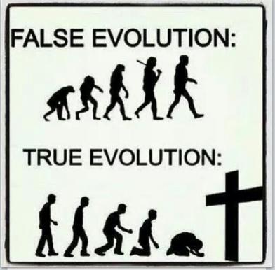 True False Evolution